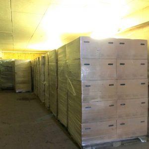Karton-verpackung-Pflanzen-800-800